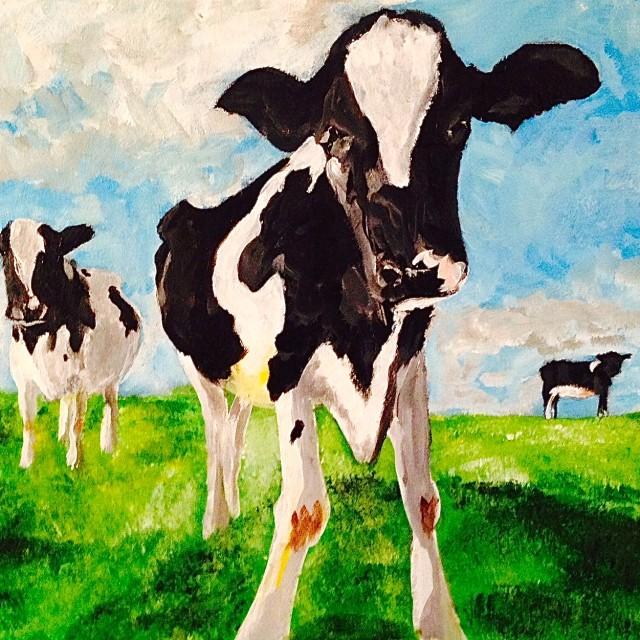 Cows #2