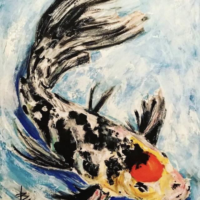Doitsu Kajuku Butterfly Fin Koi Fish